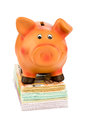 Piggy bank on banknotes a is symbolic photo for economy profitability return Stock Photo