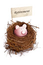 Piggy bank in bird's nest Stock Photography