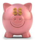 Piggy bank dollar with eyes money sign clipping path included Stock Photo