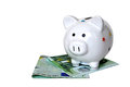 Piggy bank and euro banknotes isolated Royalty Free Stock Photo