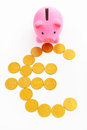 Piggy bank and euro sign Stock Image