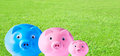 Piggy bank family on grass background Stock Image