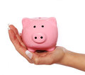 Piggy bank female hand isolated white background Stock Photography
