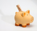 Piggy bank and a few turkish liras Royalty Free Stock Photo
