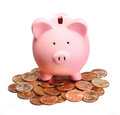 Piggy bank on gold coins isolated white money Stock Photography