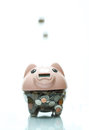 Piggy bank is good for saving the money Royalty Free Stock Image