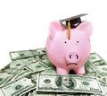 Piggy bank with graduation cap frowning on cash Royalty Free Stock Photos