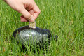 Piggy bank on the grass and hand Royalty Free Stock Image