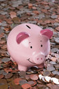 Piggy bank with money background Stock Image