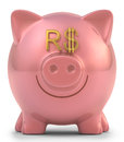 Piggy bank real with eyes brazilian money sign clipping path included Royalty Free Stock Photos
