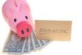Piggy bank saving for education Royalty Free Stock Photo