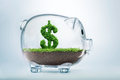 Piggy bank savings concept with grass growing in shape of us dollar Royalty Free Stock Photography