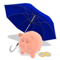 Piggy Bank under the umbrella Royalty Free Stock Image