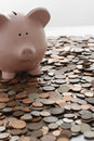Piggy bank and vast amount of coins Stock Photos