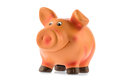 Piggy bank on white background Stock Image