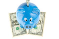 Piggy bank on white background Royalty Free Stock Photography