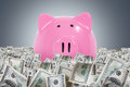 Piggy banks in dollar farm big pink bank one hundred money on dark background Stock Photos