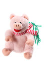 Piggy Soft Toy Royalty Free Stock Photo