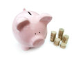 Piggybank and coins with stacks of on one side Stock Image
