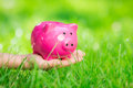 Piggybank in hand over green spring grass outdoor shallow depth of field Royalty Free Stock Images