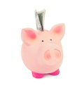 Piggybank savings with one dollar inside Stock Photos