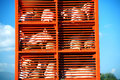 Pigs and hos raised for food being transported to a butcher hous house in an orange truck on sunny day Royalty Free Stock Images