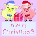 Pigs merry christmas
