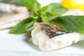 Pike Perch Fillet with Basil closeup Stock Images