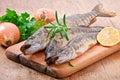 Pike raw fish Royalty Free Stock Photo