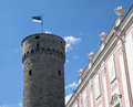 Pikk hermann with the flag of estonia tower in tallin Stock Photos