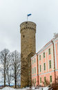 Pikk Hermann or Tall Hermann (German: Langer Hermann) is a tower Royalty Free Stock Photo