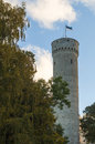 Pikk Hermann or Tall Hermann is a tower of the Toompea Castle Royalty Free Stock Photo