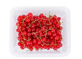 Pile berries of red currant on white background in plastic box isolated Stock Image