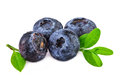 Pile of blueberries Royalty Free Stock Photo