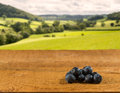 Pile of blueberries on wooden table in field Royalty Free Stock Photography