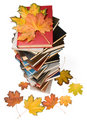 Pile of books and autumn leaves Royalty Free Stock Photos