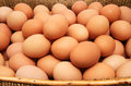 Pile of chicken eggs Royalty Free Stock Photo