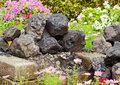 Pile of coal on ground decorate in flower garden Royalty Free Stock Photos