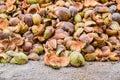 Pile Of Coir Husks On The Ground
