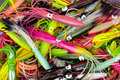 Pile of colorful fishing lures Royalty Free Stock Photo