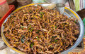 Pile of deep fried grasshoppers a snack often used in asia Stock Image