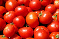 A pile of dewily red tomatoes Stock Photography