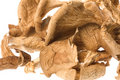 Pile of dried mushrooms Royalty Free Stock Images