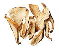 Pile of dried shiitake mushroom slices isolated on white backgro Stock Photography
