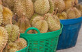 Pile of durian in the basket for sale in local market in thailand Royalty Free Stock Photos