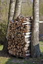 Pile of Firewood Stock Photo