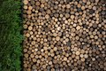 Pile of Firewood in Garden Royalty Free Stock Photo