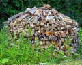 Pile of firewood stacked and with cut Stock Photo