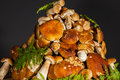 Pile of fresh porcini mushroomsblack background Royalty Free Stock Photo