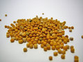 Pile of grains of mustard seed Royalty Free Stock Photos
